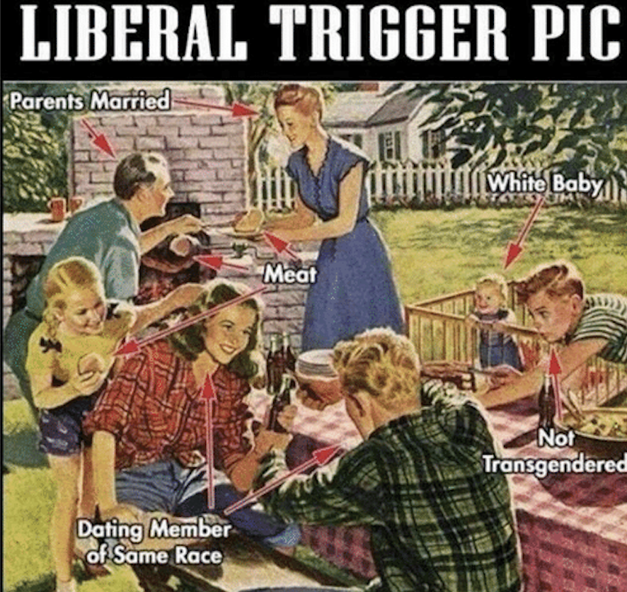 illustration of family at picnic, entitled Liberal Trigger Pic