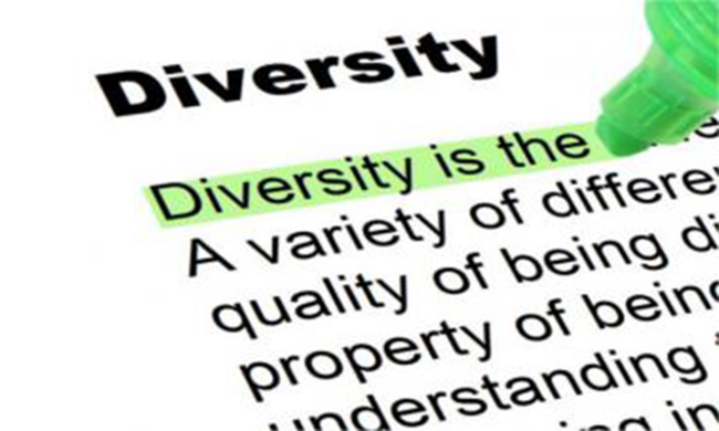Dictionary entry for Diversity.