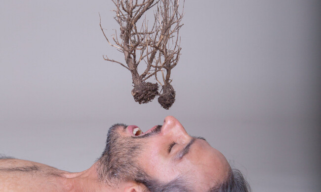photo of a man lying down with a plant hanging above