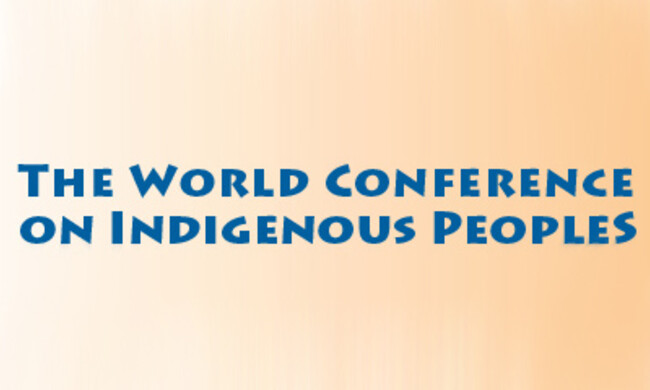 World Conference of Indigenous Peoples banner