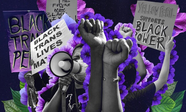 An illustration of protest signs with slogans reading Black Trans Lives Matter