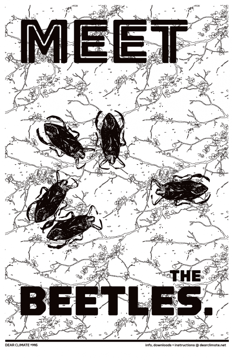 a poster with beetles