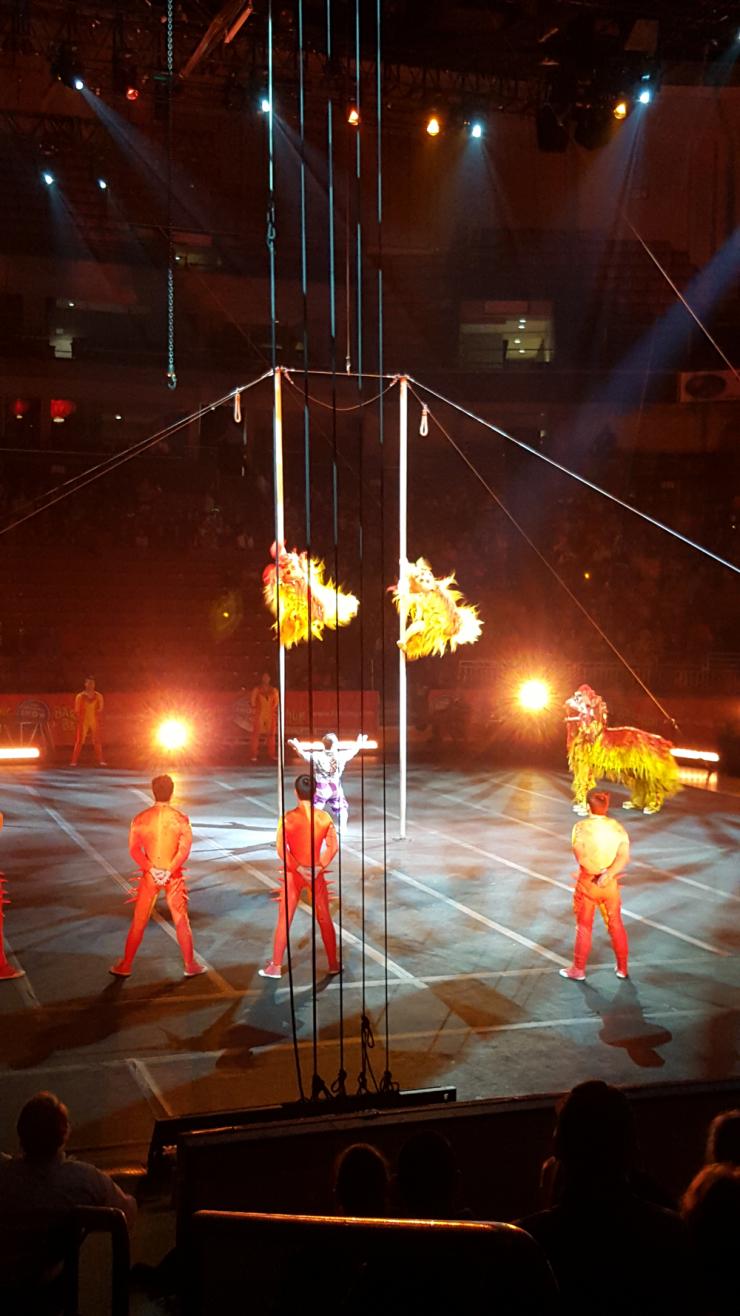 circus acrobats performing