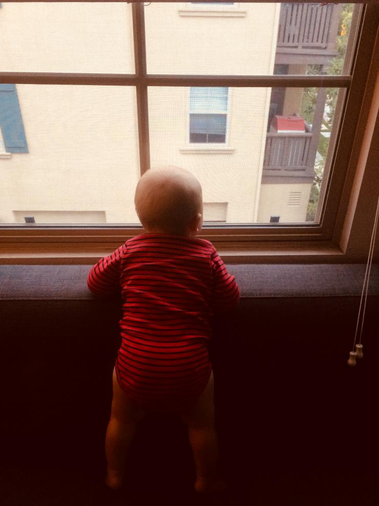 baby looking out of a window
