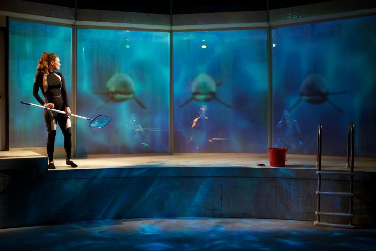 projection of three orcas in a tank