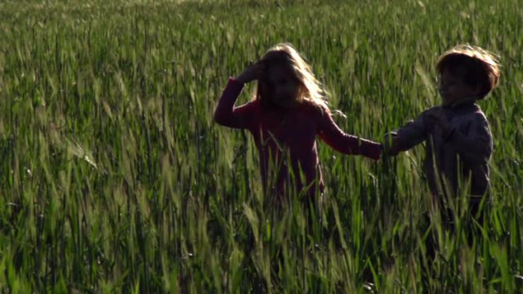 A little boy and girl in a field