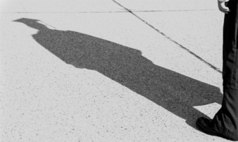 A shadow on a sidewalk.