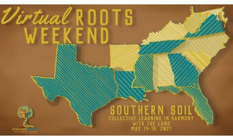 blue and yellow map of the southern states with text virtual roots weekend.